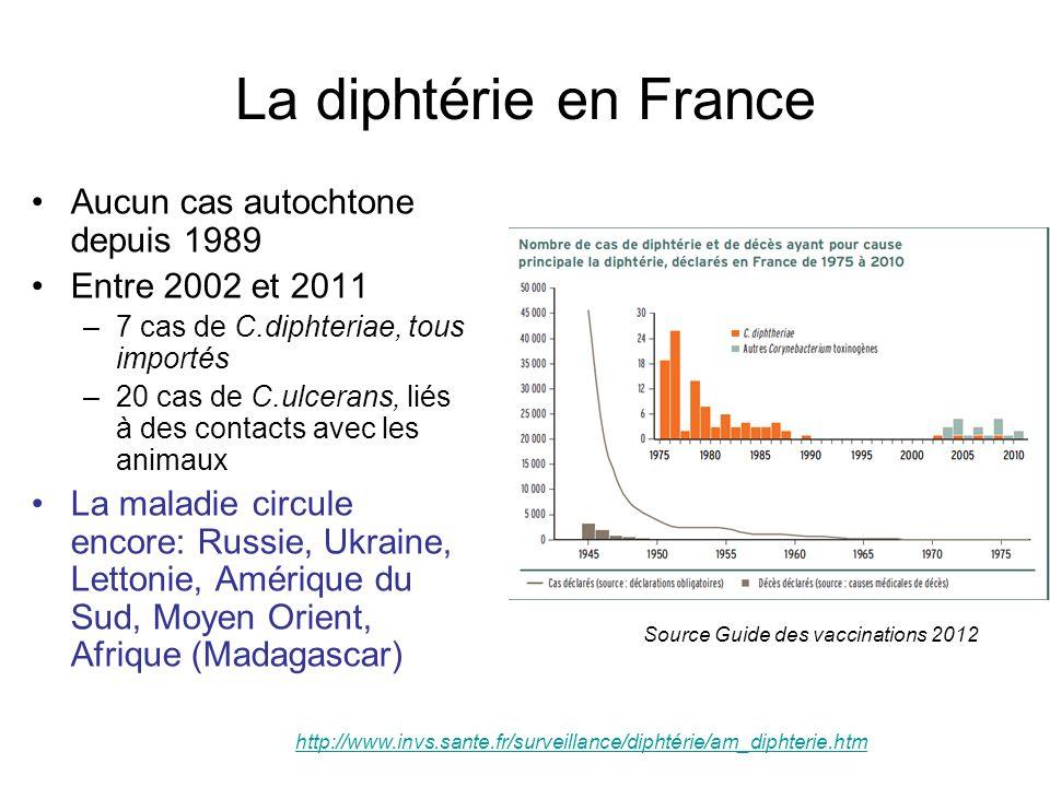 La diphtérie en France Aucun cas autochtone depuis 1989 Entre 2002 et 2011 –7 cas de C.diphteriae, tous importés –20 cas de C.ulcerans, liés à des con
