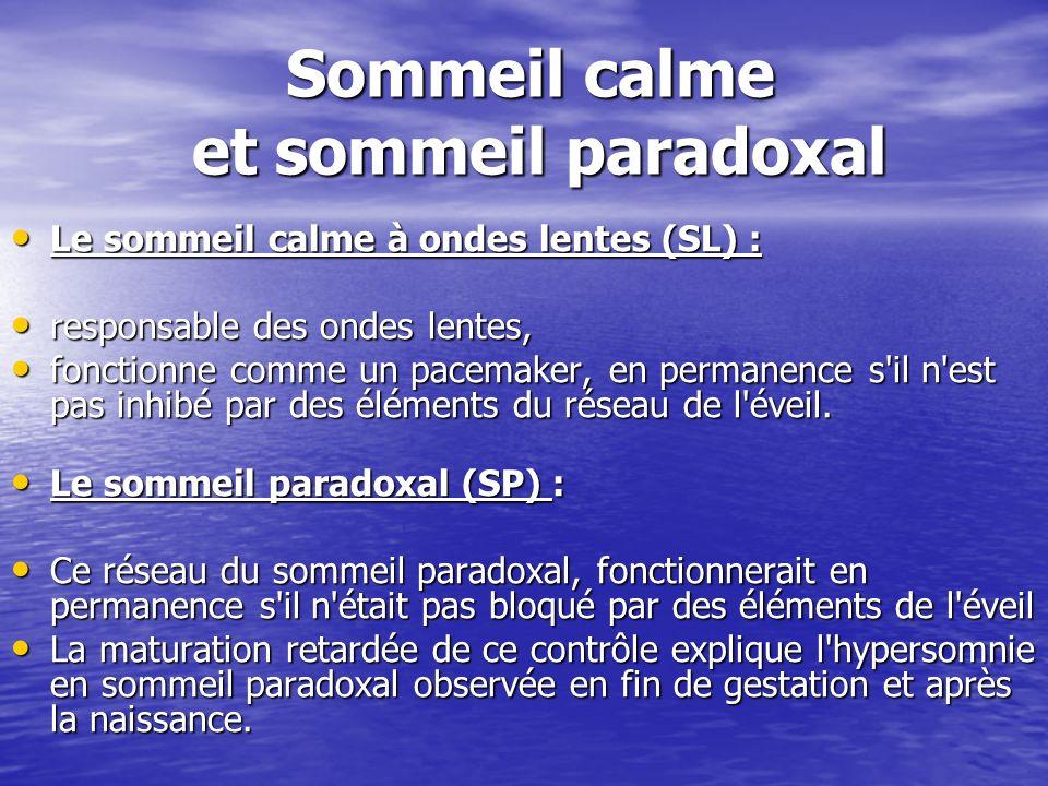 Sommeil calme et sommeil paradoxal Le sommeil calme à ondes lentes (SL) : Le sommeil calme à ondes lentes (SL) : responsable des ondes lentes, respons