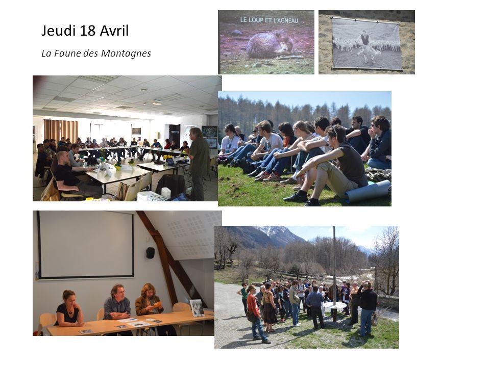 Jeudi 18 Avril La Faune des Montagnes