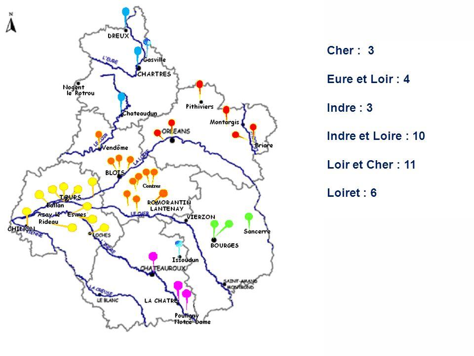Etats des lieux (2) Enquête localeEnquête nationale Indre et Loire106 Loir et Cher118 Loiret64 Indre32 Cher31 Eure et loir34 Total 3625 CLAN(s) Région Centre – 29 janvier 2009 - Blois