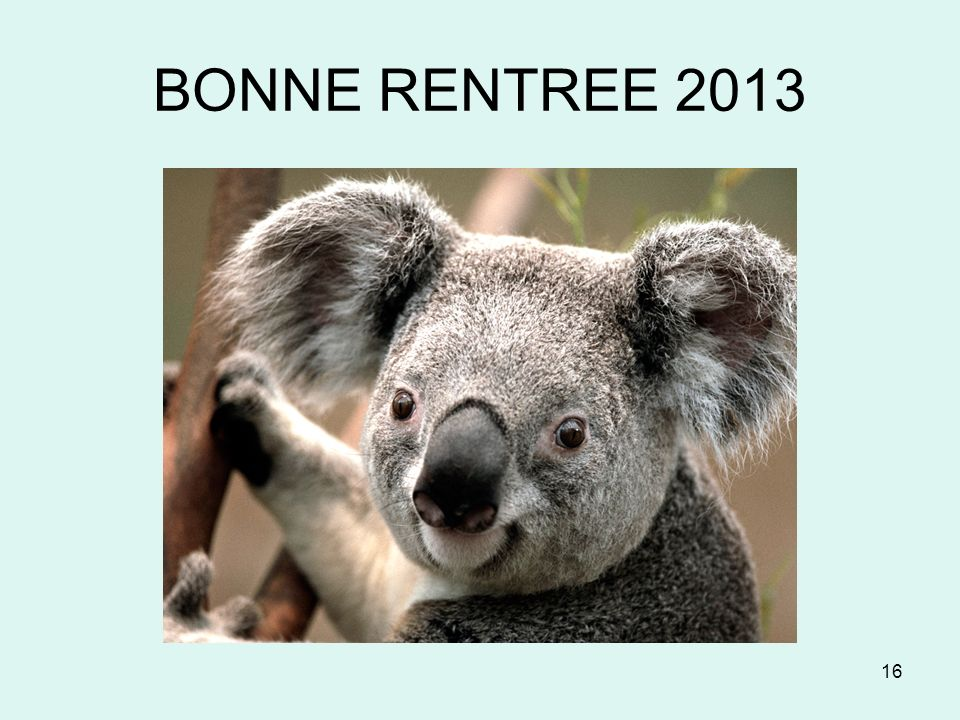 BONNE RENTREE 2013 16