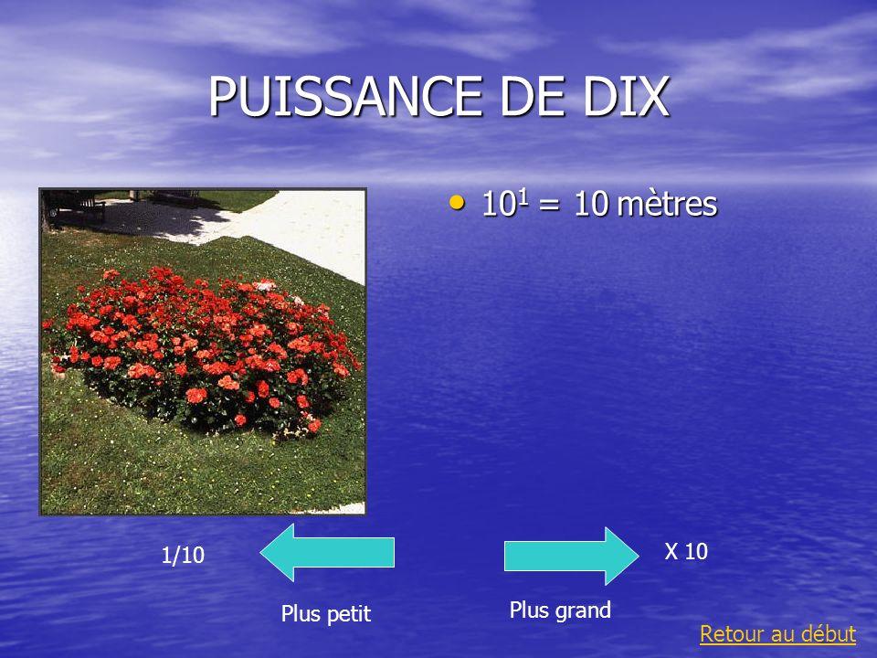 PUISSANCE DE DIX 10 2 = 100 mètres 10 2 = 100 mètres Plus grand 1/10 Plus petit X 10 Retour au début