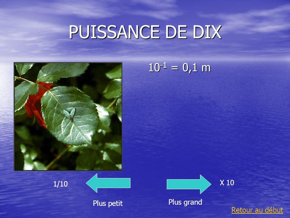 PUISSANCE DE DIX 10 -1 = 0,1 m Plus grand 1/10 Plus petit X 10 Retour au début