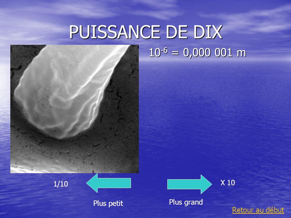 PUISSANCE DE DIX 10 -6 = 0,000 001 m Plus grand 1/10 Plus petit X 10 Retour au début
