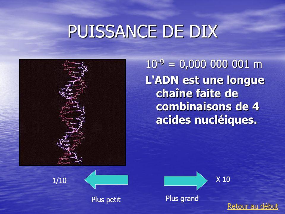 PUISSANCE DE DIX 10 -9 = 0,000 000 001 m L'ADN est une longue chaîne faite de combinaisons de 4 acides nucléiques. Plus grand 1/10 Plus petit X 10 Ret