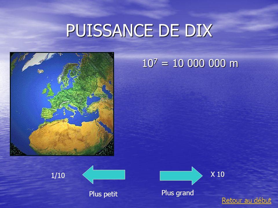 PUISSANCE DE DIX 10 -2 = 0,01 m Plus grand 1/10 Plus petit X 10 Retour au début