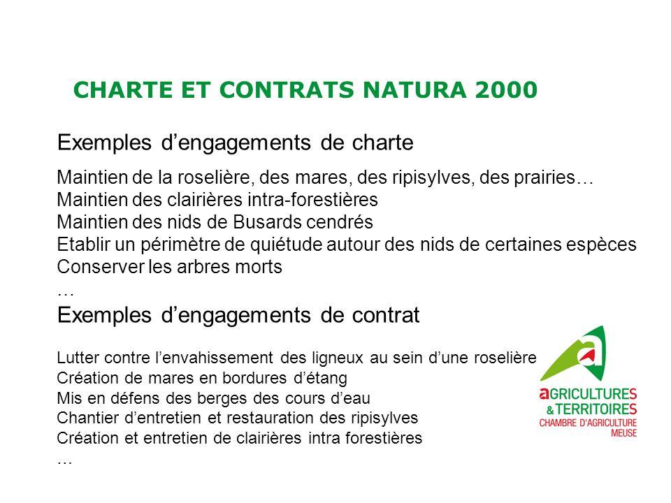 CHARTE ET CONTRATS NATURA 2000 Exemples dengagements de charte Maintien de la roselière, des mares, des ripisylves, des prairies… Maintien des clairiè