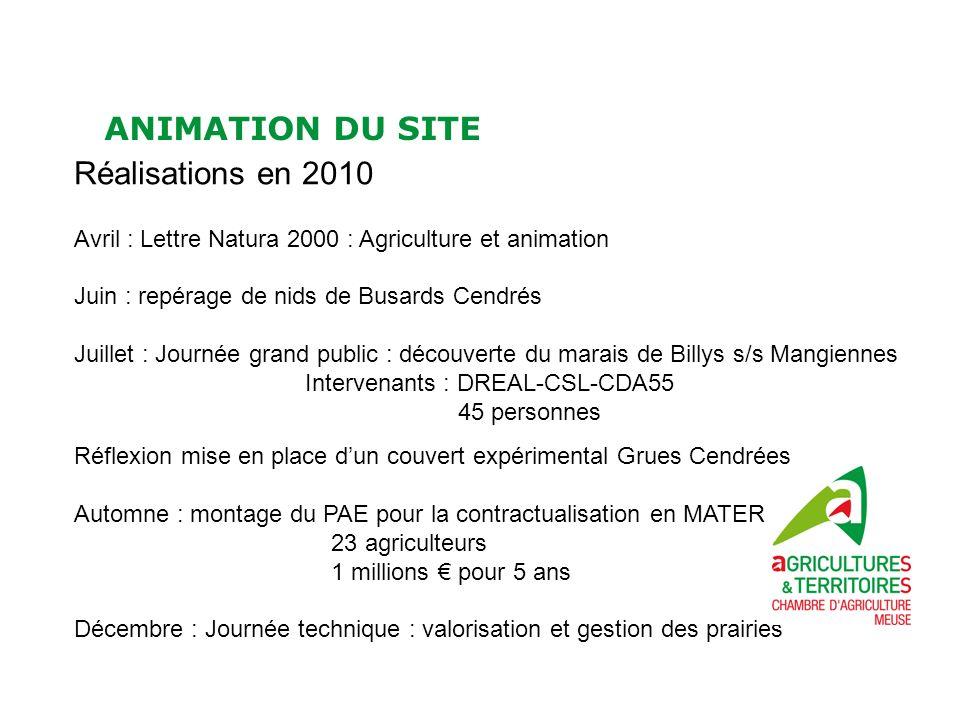 ANIMATION DU SITE Réalisations en 2010 Avril : Lettre Natura 2000 : Agriculture et animation Juin : repérage de nids de Busards Cendrés Juillet : Jour