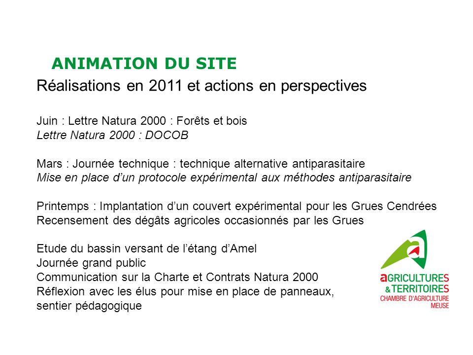 ANIMATION DU SITE Réalisations en 2011 et actions en perspectives Juin : Lettre Natura 2000 : Forêts et bois Lettre Natura 2000 : DOCOB Mars : Journée