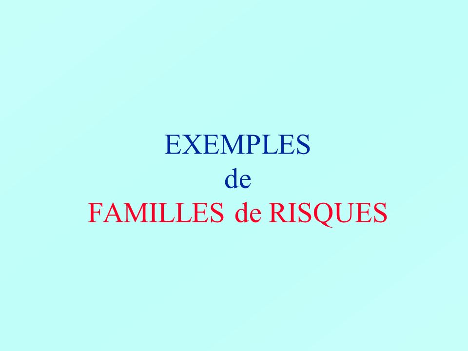FAMILLE de RISQUES