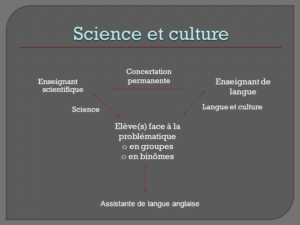 Enseignant scientifique Elève(s) face à la problématique o en groupes o en binômes Enseignant de langue Science Langue et culture Concertation permane