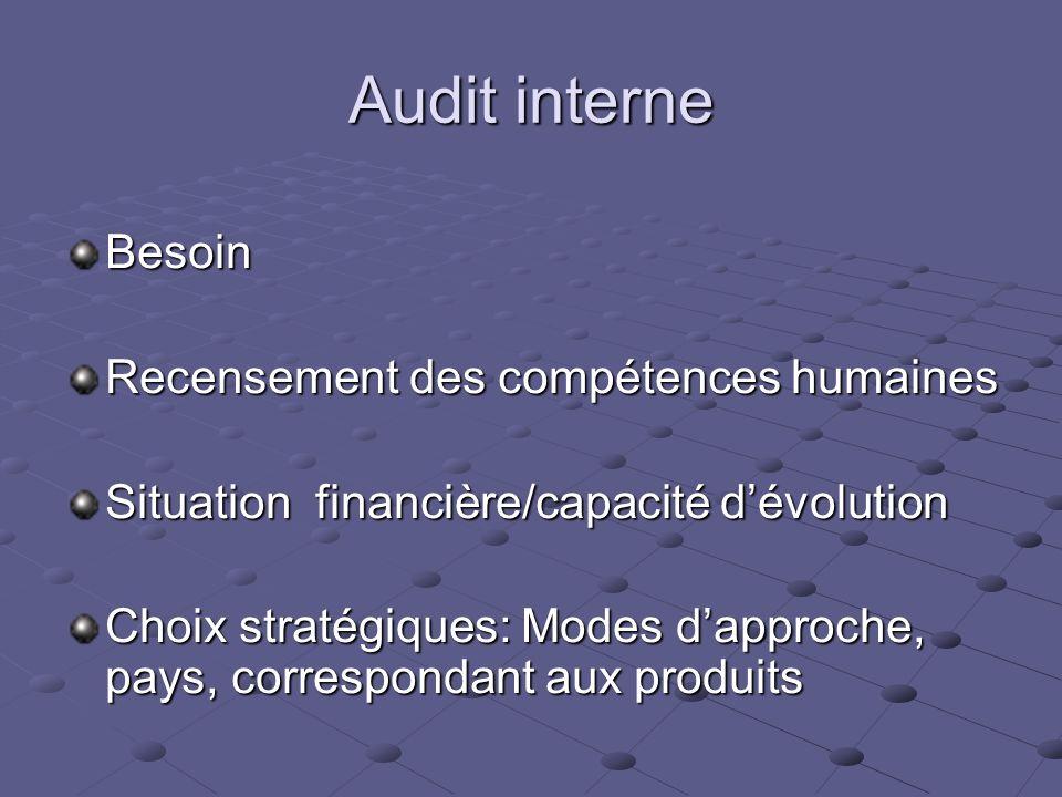 Audit interne Besoin Recensement des compétences humaines Situation financière/capacité dévolution Choix stratégiques: Modes dapproche, pays, correspo