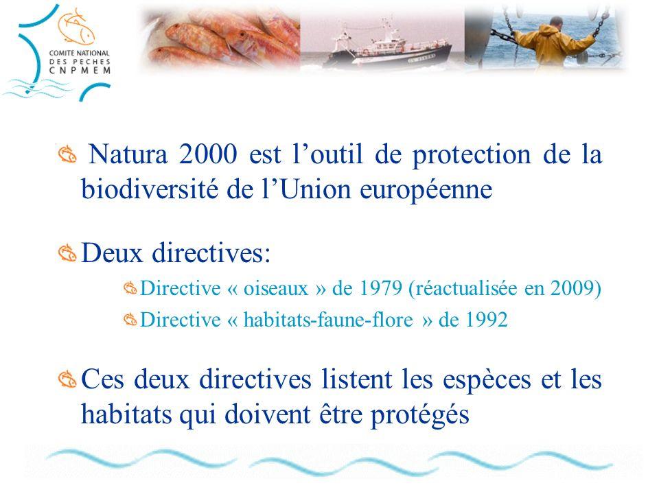Natura 2000 est loutil de protection de la biodiversité de lUnion européenne Deux directives: Directive « oiseaux » de 1979 (réactualisée en 2009) Directive « habitats-faune-flore » de 1992 Ces deux directives listent les espèces et les habitats qui doivent être protégés