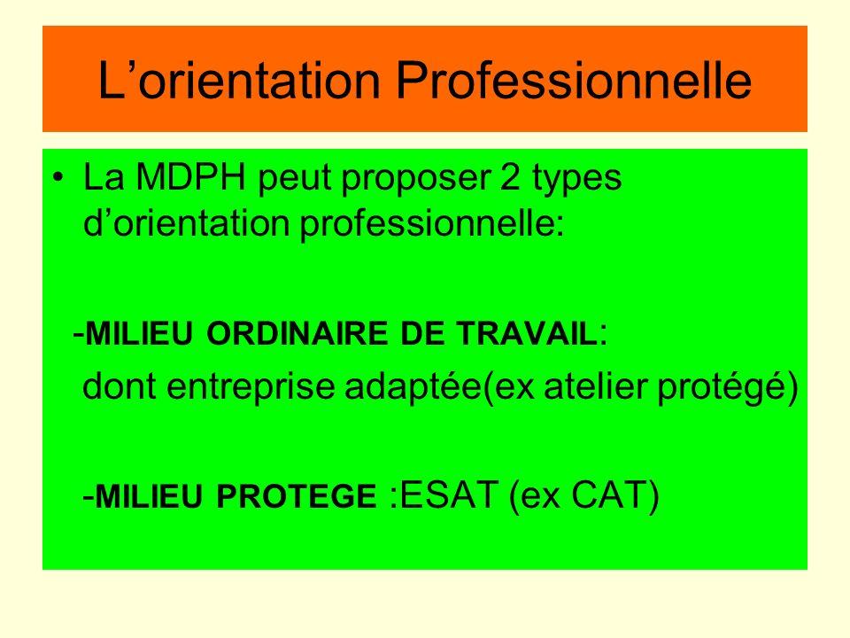 Lorientation Professionnelle La MDPH peut proposer 2 types dorientation professionnelle: - MILIEU ORDINAIRE DE TRAVAIL : dont entreprise adaptée(ex at