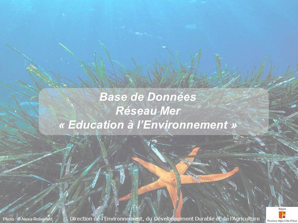 Accueil Photo : © Alexis Rosenfeld Base de Données Réseau Mer « Education à lEnvironnement » Base de Données Réseau Mer « Education à lEnvironnement » Direction de lEnvironnement, du Développement Durable et de lAgriculture