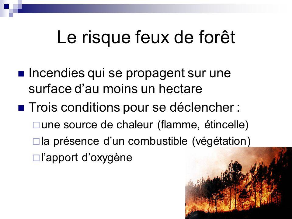 Le risque feux de forêt Incendies qui se propagent sur une surface dau moins un hectare Trois conditions pour se déclencher : une source de chaleur (f