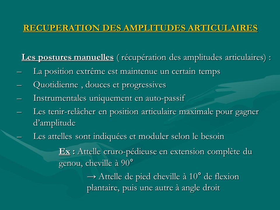 RECUPERATION DES AMPLITUDES ARTICULAIRES Les postures manuelles ( récupération des amplitudes articulaires) : –La position extrême est maintenue un ce