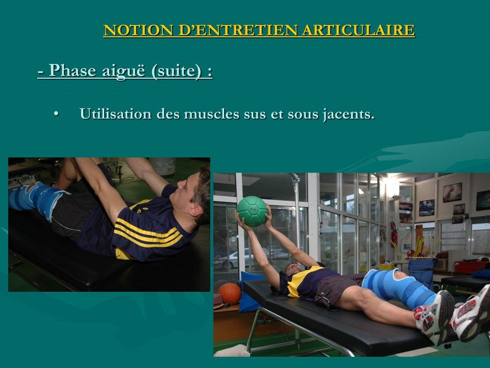 Utilisation des muscles sus et sous jacents. Utilisation des muscles sus et sous jacents. - Phase aiguë (suite) : NOTION DENTRETIEN ARTICULAIRE