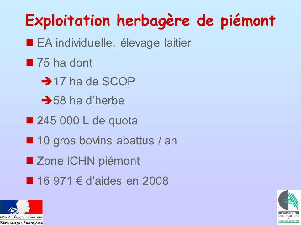 Exploitation herbagère de piémont EA individuelle, élevage laitier 75 ha dont 17 ha de SCOP 58 ha dherbe 245 000 L de quota 10 gros bovins abattus / an Zone ICHN piémont 16 971 daides en 2008