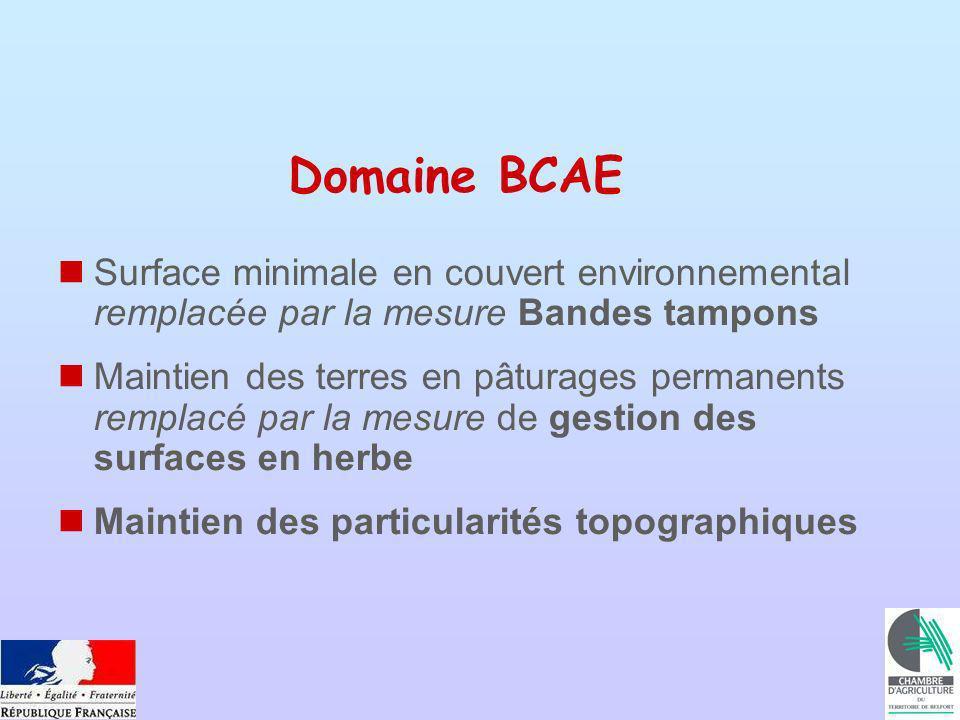 Domaine BCAE Surface minimale en couvert environnemental remplacée par la mesure Bandes tampons Maintien des terres en pâturages permanents remplacé par la mesure de gestion des surfaces en herbe Maintien des particularités topographiques