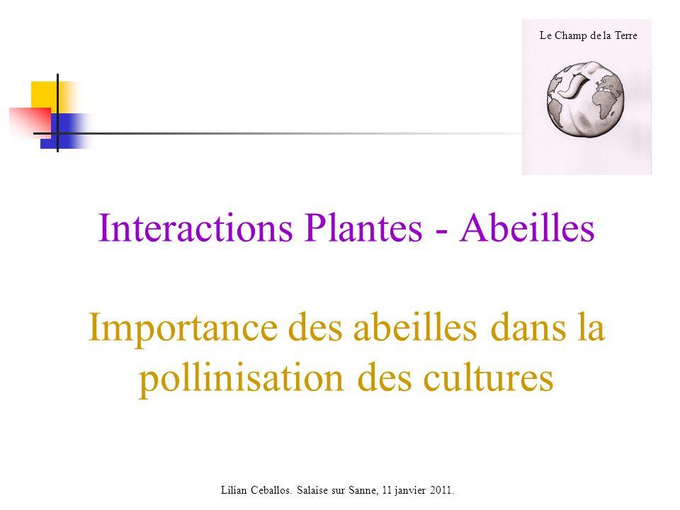 Interactions Plantes - Abeilles Importance des abeilles dans la pollinisation des cultures Lilian Ceballos. Salaise sur Sanne, 11 janvier 2011. Le Cha