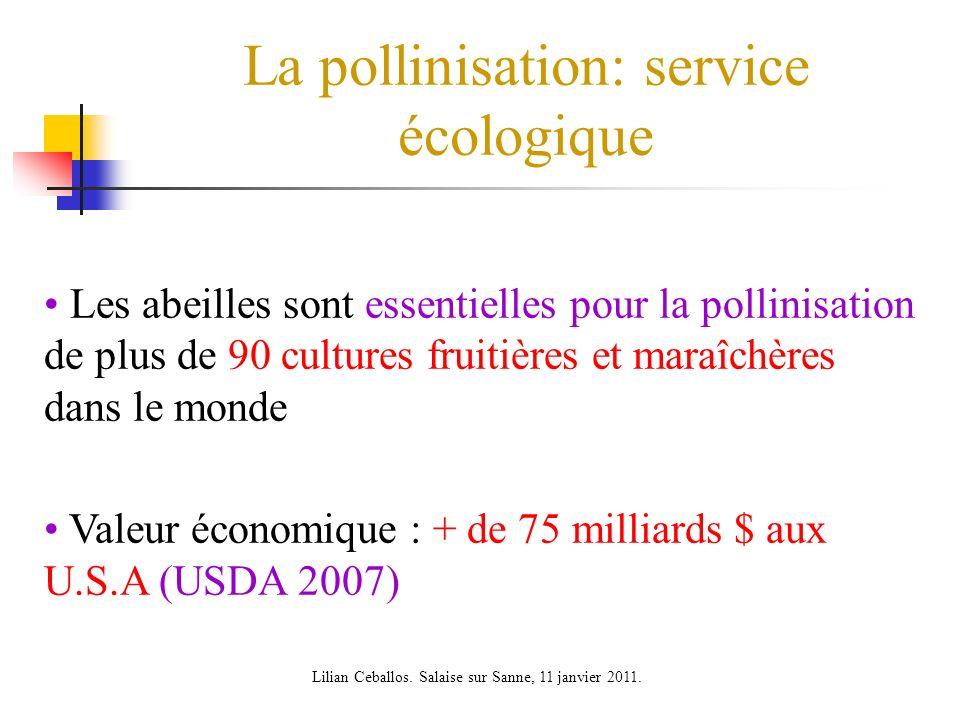 La pollinisation: service écologique Les abeilles sont essentielles pour la pollinisation de plus de 90 cultures fruitières et maraîchères dans le mon