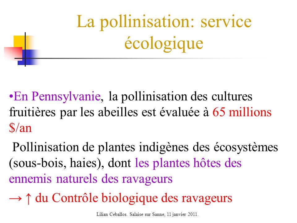 La pollinisation: service écologique En Pennsylvanie, la pollinisation des cultures fruitières par les abeilles est évaluée à 65 millions $/an Pollini