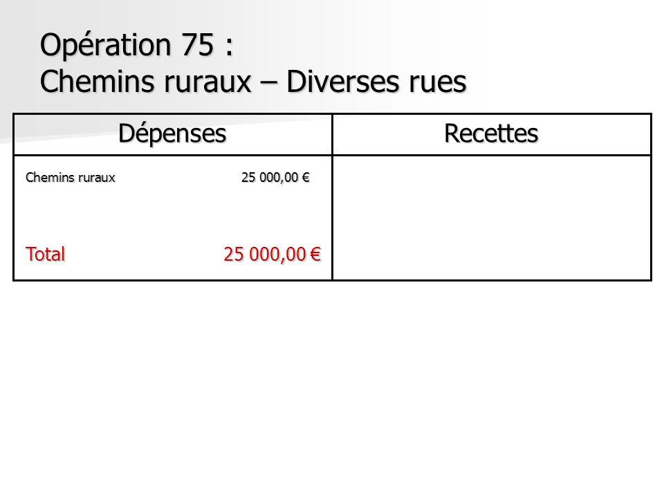 Opération 75 : Chemins ruraux – Diverses rues DépensesRecettes Chemins ruraux25 000,00 Chemins ruraux25 000,00 Total25 000,00 Total25 000,00