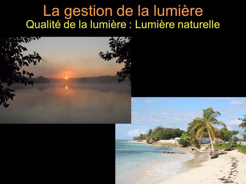 La gestion de la lumière Qualité de la lumière : Lumière naturelle