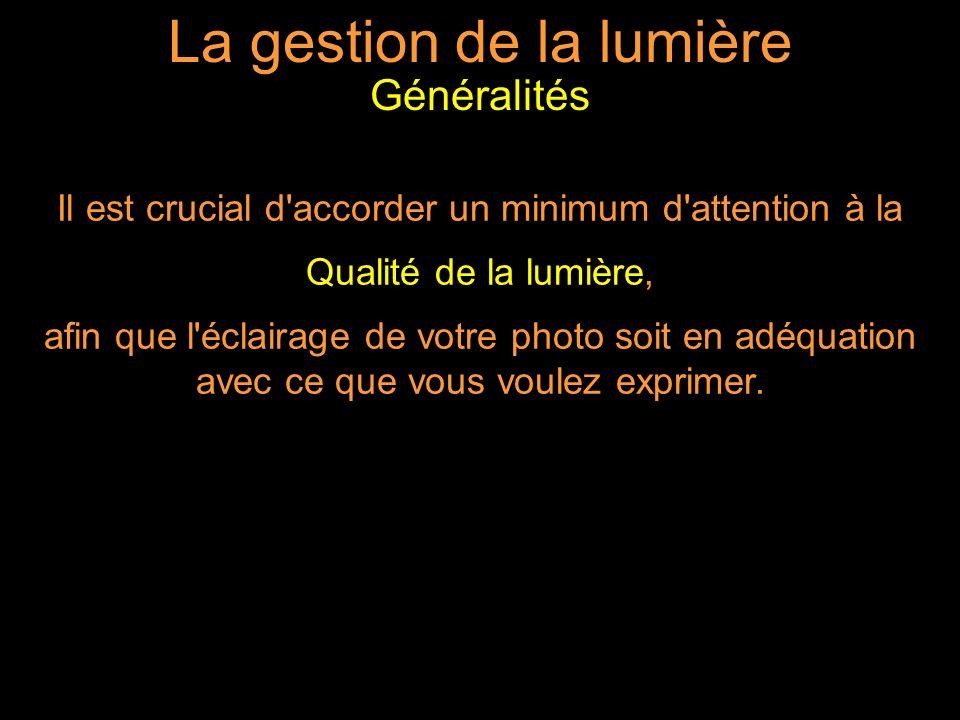La gestion de la lumière Il est crucial d accorder un minimum d attention à la Qualité de la lumière, afin que l éclairage de votre photo soit en adéquation avec ce que vous voulez exprimer.