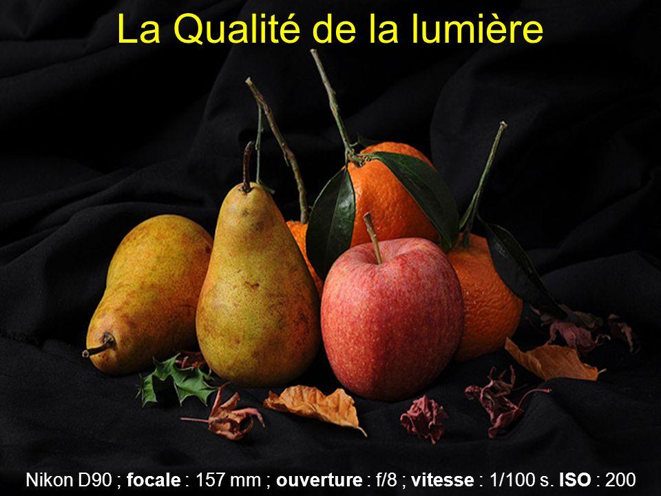 La Qualité de la lumière Nikon D90 ; focale : 157 mm ; ouverture : f/8 ; vitesse : 1/100 s.