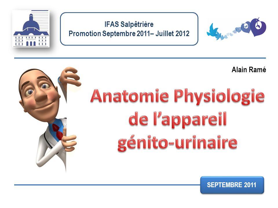IFAS Salpêtrière Promotion Septembre 2011– Juillet 2012 Alain Ramé SEPTEMBRE 2011