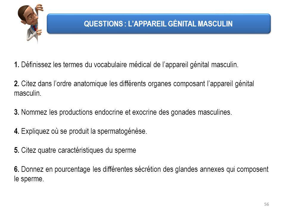 56 QUESTIONS : LAPPAREIL GÉNITAL MASCULIN 1. Définissez les termes du vocabulaire médical de lappareil génital masculin. 2. Citez dans lordre anatomiq
