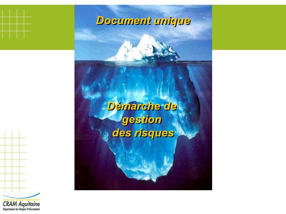 Démarche de gestion des risques Document unique