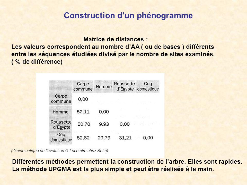 Matrice de distances : Les valeurs correspondent au nombre dAA ( ou de bases ) différents entre les séquences étudiées divisé par le nombre de sites e