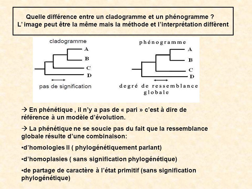 Quelle différence entre un cladogramme et un phénogramme ? L image peut être la même mais la méthode et linterprétation diffèrent En phénétique, il ny