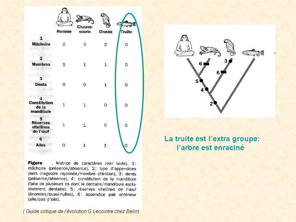 La truite est lextra groupe: larbre est enraciné ( Guide critique de lévolution G Lecointre chez Belin)