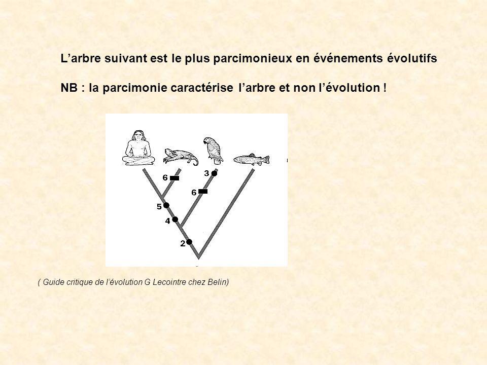 Larbre suivant est le plus parcimonieux en événements évolutifs NB : la parcimonie caractérise larbre et non lévolution ! ( Guide critique de lévoluti
