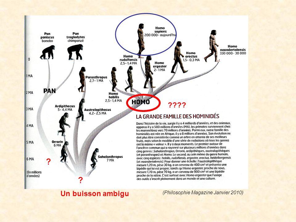 Un buisson ambigu ???? ? ? (Philosophie Magazine Janvier 2010)