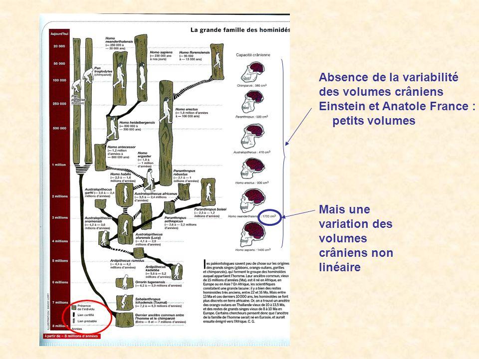 Absence de la variabilité des volumes crâniens Einstein et Anatole France : petits volumes Mais une variation des volumes crâniens non linéaire
