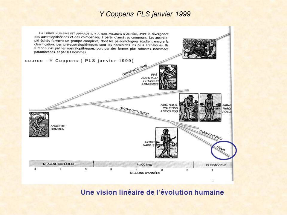 Une vision linéaire de lévolution humaine Y Coppens PLS janvier 1999
