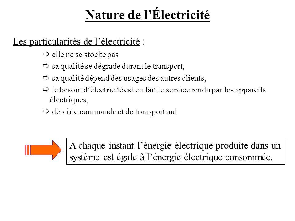 Les particularités de lélectricité : elle ne se stocke pas sa qualité se dégrade durant le transport, sa qualité dépend des usages des autres clients,