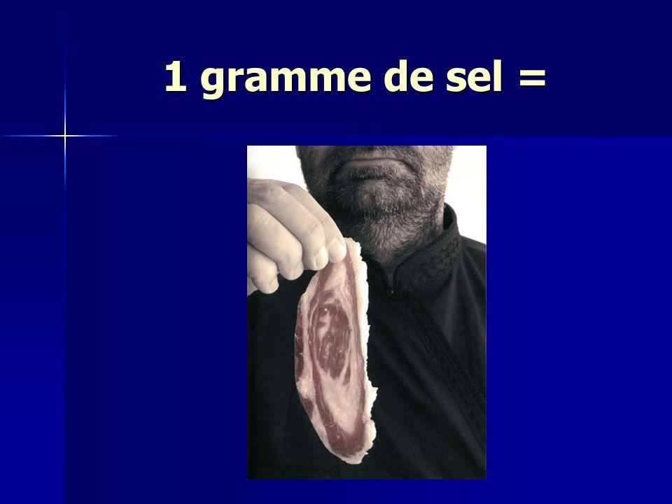 1 gramme de sel =