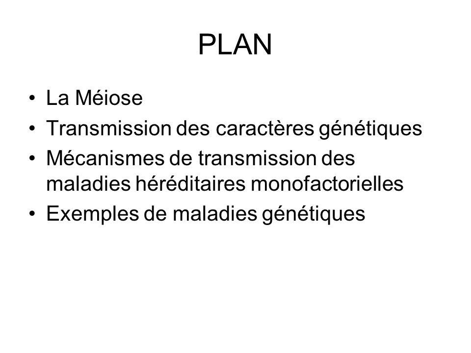 PLAN La Méiose Transmission des caractères génétiques Mécanismes de transmission des maladies héréditaires monofactorielles Exemples de maladies génét