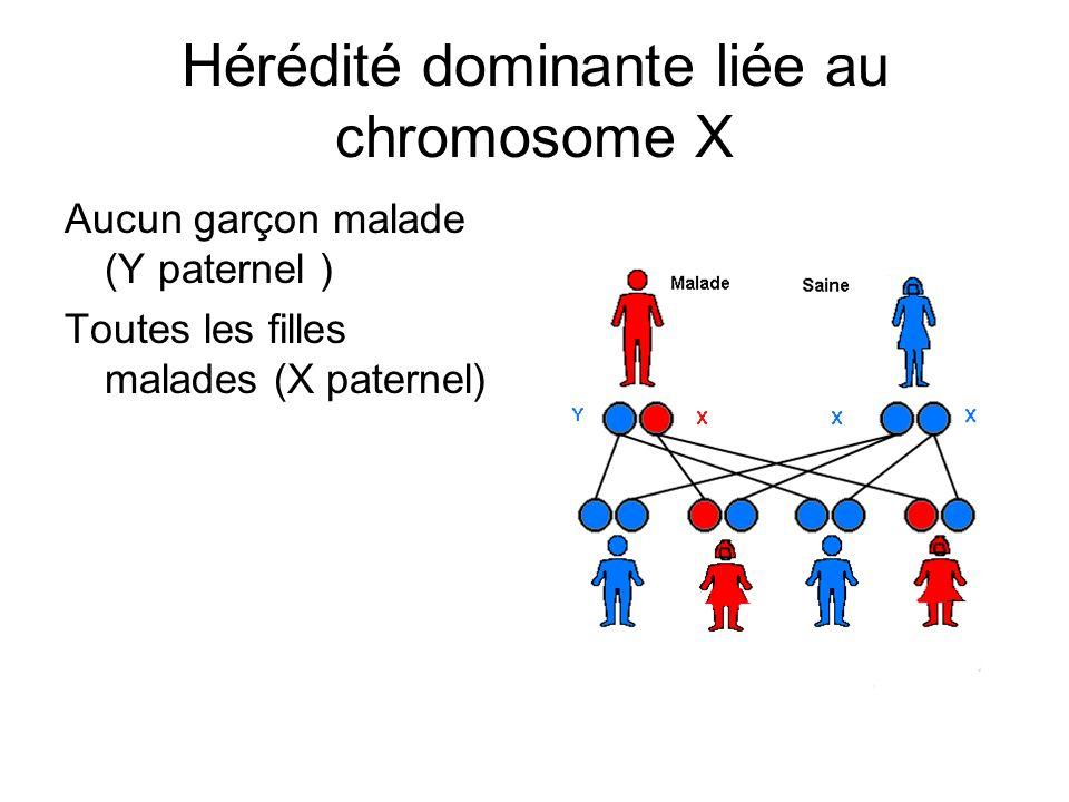 Hérédité dominante liée au chromosome X Aucun garçon malade (Y paternel ) Toutes les filles malades (X paternel)