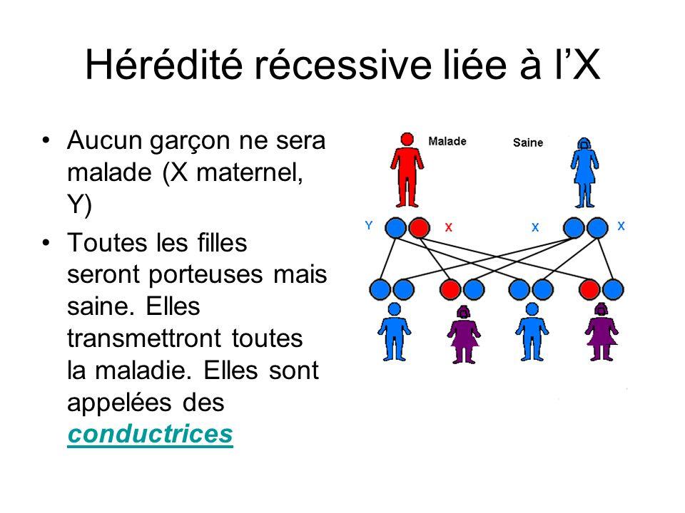 Hérédité récessive liée à lX Aucun garçon ne sera malade (X maternel, Y) Toutes les filles seront porteuses mais saine. Elles transmettront toutes la