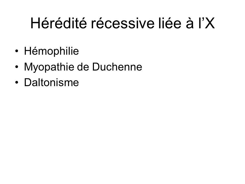 Hérédité récessive liée à lX Hémophilie Myopathie de Duchenne Daltonisme