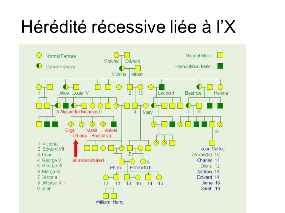 Hérédité récessive liée à lX