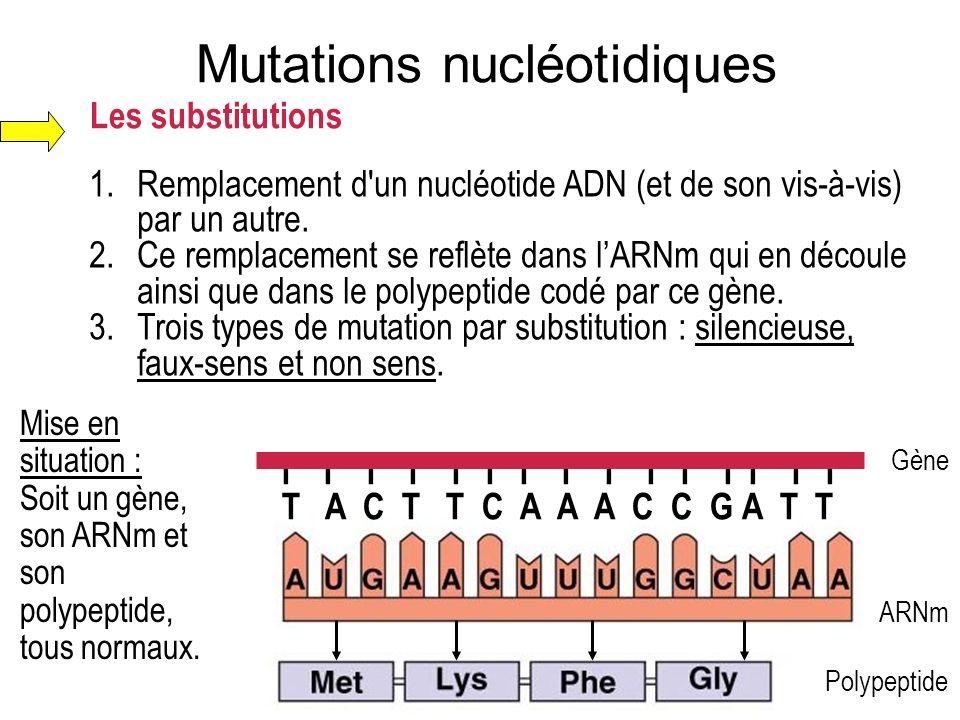 Les substitutions 1.Remplacement d'un nucléotide ADN (et de son vis-à-vis) par un autre. 2.Ce remplacement se reflète dans lARNm qui en découle ainsi