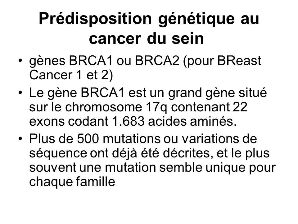 Prédisposition génétique au cancer du sein gènes BRCA1 ou BRCA2 (pour BReast Cancer 1 et 2) Le gène BRCA1 est un grand gène situé sur le chromosome 17